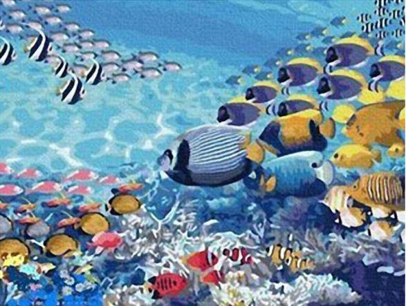 Abstract Fish Swimming - DIY Paint By Numbers - Numeral Paint