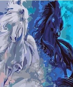 Black and White Horses paint by numbers