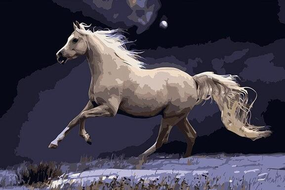 Galloping White Horse adult paint by numbers