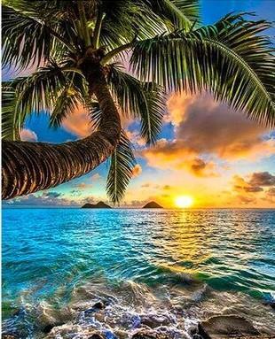 Sun on Seaside