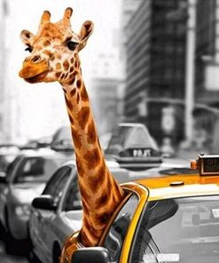 Giraffe in Taxi paint by numbers