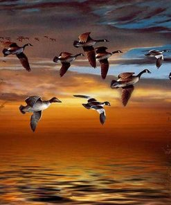 Geese Fly South Birds Paint By Numbers