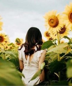 Girl In Sunflower Field paint by numbers