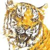 Golden Tiger paint by numbers