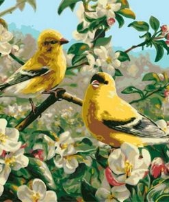 Goldfinch Bird paint by numbers