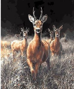 Grassland Deers paint by numbers