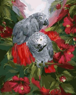 Gray Parrot paint by numbers