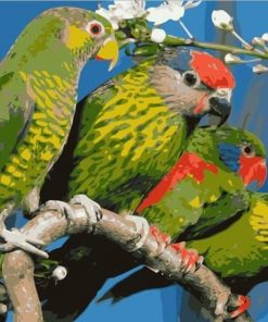 Green Parrots paint by numbers