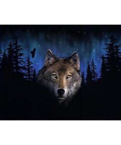 Grey Wolf In The Trees paint by numbers