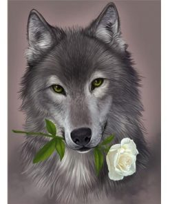 Grey wolf with Flower paint by numbers