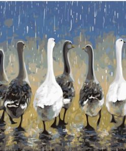 Group ducks paint by numbers