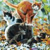 Group of Cats paint by numbers