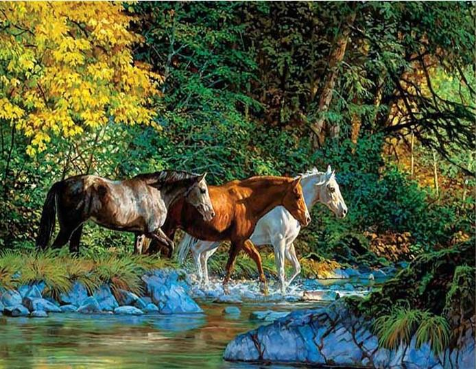 Group of Horses Cross the river paint by numbers