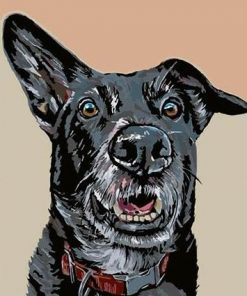 Guard Dog paint by numbers