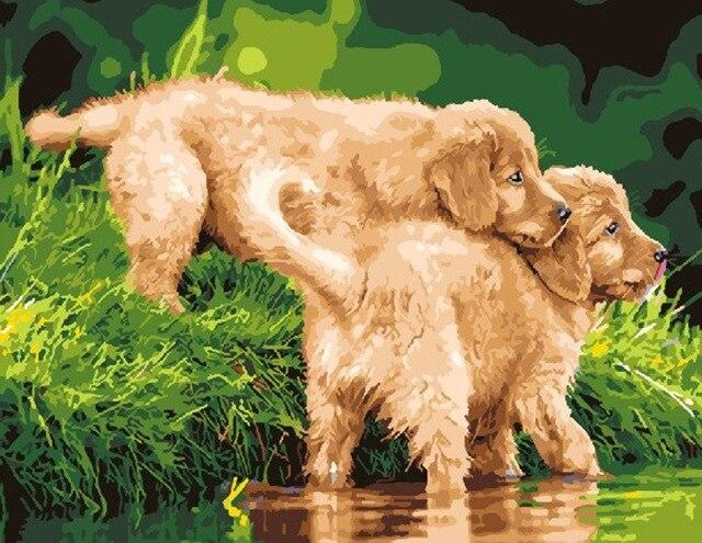 Puppies In The River Animals Paint By Number Numeral Paint