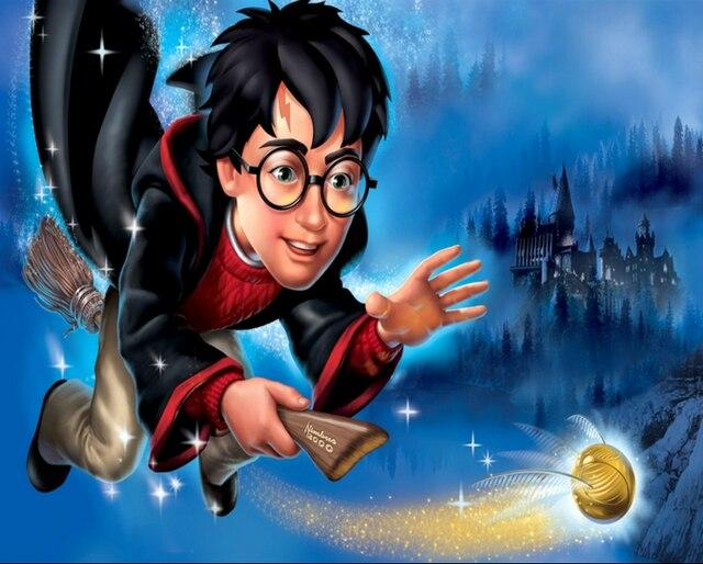 Harry Potter Flying Broom paint by numbers