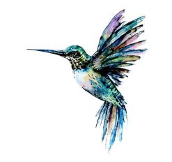 Hummingbird in blue green colors paint by numbers