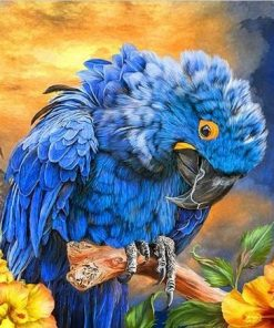 Hyacinth Macaw paint by numbers