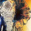 Indian Elephant paint by numbers