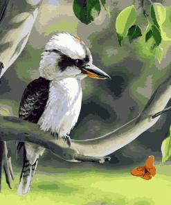 Kookaburra on Branch paint by numbers