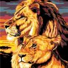 Lion And Son paint by numbers