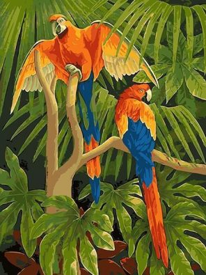 Macaw Parrots in Jungle paint by numbers