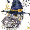 Magic Owl paint by numbers