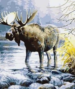 Moose in River paint by numbers