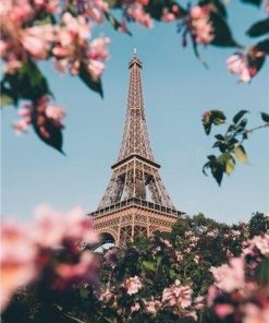 Paris Eiffel Tower In Spring paint by numbers
