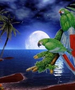 Parrots On Beach Palm paint by numbers