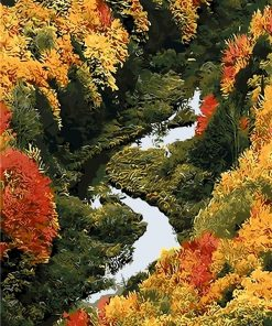 Porcupine River Forest paint by numbers