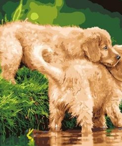 Puppies In The River paint by numbers