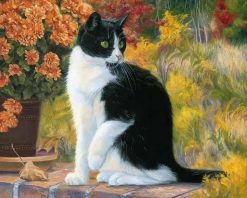 Cat Animals Picture Art - DIY Paint By Numbers - Numeral Paint