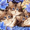 Cats Animals - DIY Paint By Numbers - Numeral Paint