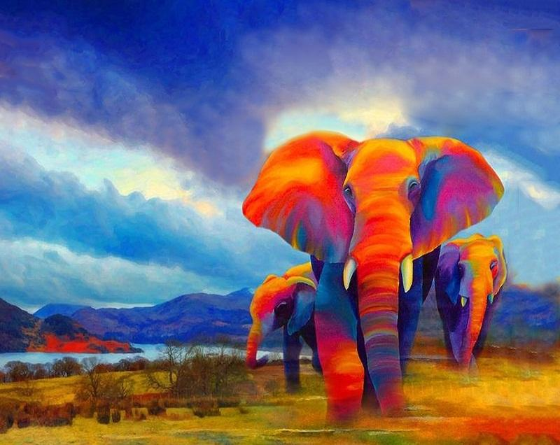 Colorful Elephants modern art canvas - DIY Paint By Numbers - Numeral Paint