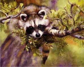 Animals Kits Acrylic Paint - DIY Paint By Numbers - Numeral Paint