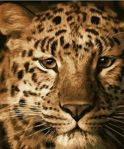 Animals Leopard - DIY Paint By Numbers - Numeral Paint