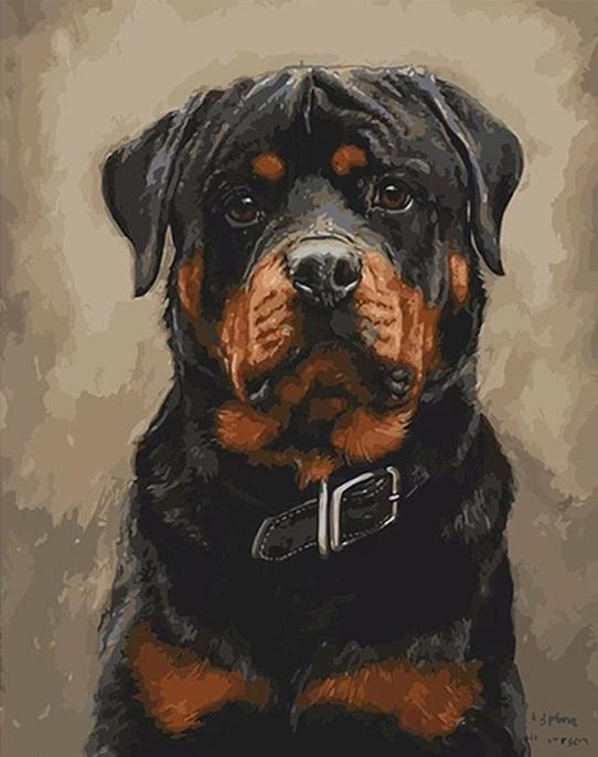 Black Dogs Home Decors - DIY Paint By Numbers - Numeral Paint