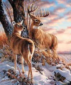 Deer - DIY Paint By Numbers - Numeral Paint