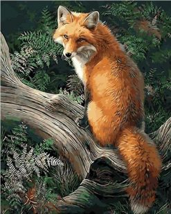Fox Animals Kits Modern Wall Art Canvas - DIY Paint By Numbers - Numeral Paint