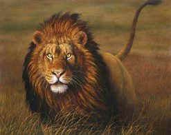 Grassland Beast Lion Animals - DIY Paint By Numbers - Numeral Paint