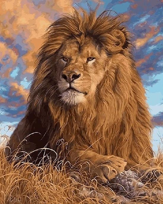 Lions Animals Picture - DIY Paint By Numbers - Numeral Paint