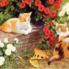 Cute Cat - DIY Paint By Numbers - Numeral Paint