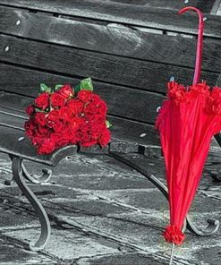 Red Flowers Umbrella paint by numbers