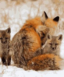 Red Fox on Snow paint by numbers