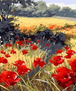 Red Poppy Flowers Field paint by numbers