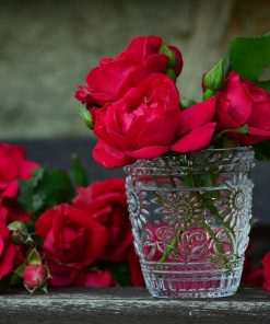 Red Roses in Glass Cup paint by numbers