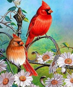 Red Sparrows paint by numbers