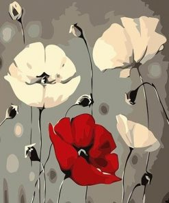 Red White Poppy Flowers paint by numbers