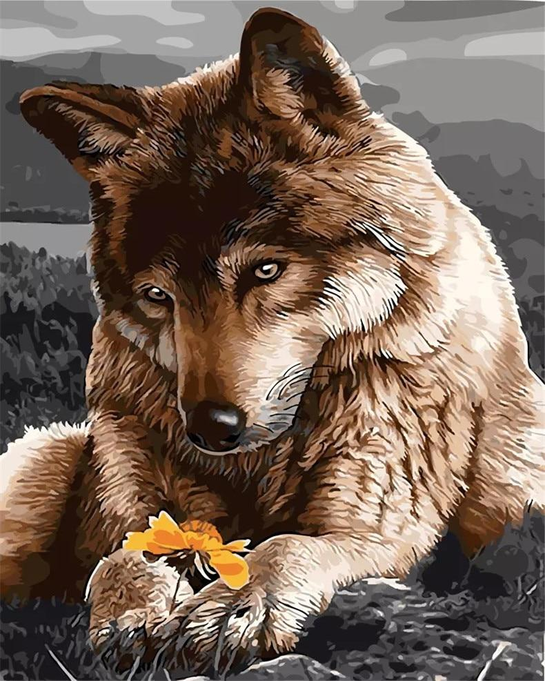 Sad Wolf paint by numbers